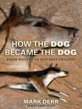How the Dog Became the Dog