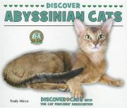 Discover Abyssinian Cats