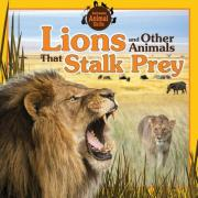 Lions and Other Animals That Stalk Prey
