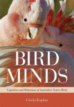 Bird Minds