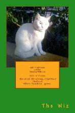 Molly Morgan and Her Amazing White Cat Book 1 of 12 Series