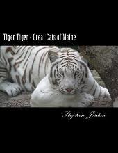 Tiger Tiger - Great Cats of Maine