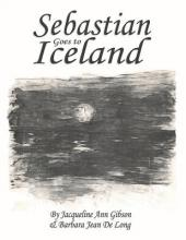 Sebastian Goes to Iceland