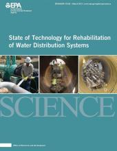 State of Technology for Rehabilitation of Water Distribution Systems