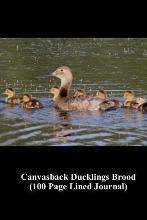 Canvasback Ducklings Brood (100 Page Lined Journal)
