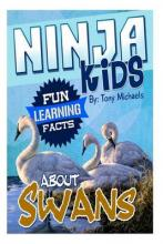Fun Learning Facts about Swans