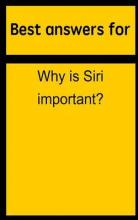 Best Answers for Why Is Siri Important?