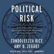 Political Risk Lib/E