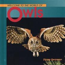 Welcome to the World of Owls