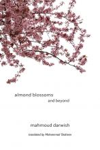 Almond Blossoms and Beyond
