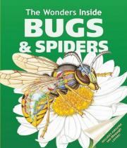 The Wonders Inside: Bugs and Spiders