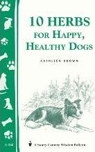 10 Herbs for Happy Healthy Dogs A260