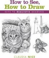 How to See, How to Draw [new-in-paperback]