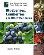 Blueberries, Cranberries and Other Vacciniums