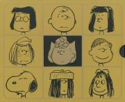 Complete Peanuts 1987-1990, The: Gift Box Set