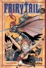 Fairy Tail 8