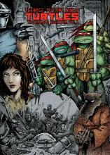 Teenage Mutant Ninja Turtles: The Ultimate Collection: Volume 1