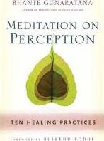 Meditation on Perception