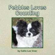 Pebbles Loves Counting