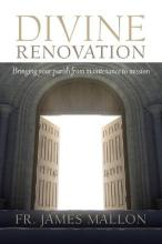 Divine Renovation Bringing Your Parish from Maintenance to Mission