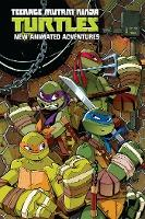 Teenage Mutant Ninja Turtles: New Animated Adventures Omnibus Volume 1
