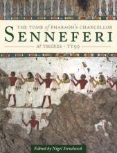 The Tomb of Pharaoh's Chancellor Senneferi at Thebes (TT99): Volume 1