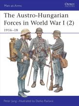 The Austro-Hungarian Forces in World War I: 1916-18 v. 2