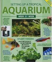 Setting Up a Tropical Aquarium Week-by-Week