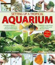 Setting Up a Tropical Aquarium
