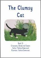 The Clumsy Cat
