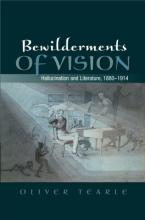 Bewilderments of Vision