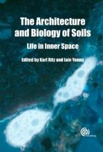 Architecture and Biology and Soils