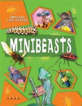 Amazing Life Cycles: Minibeasts