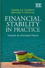 Financial Stability in Practice