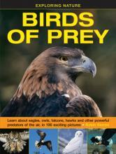 Exploring Nature: Birds of Prey