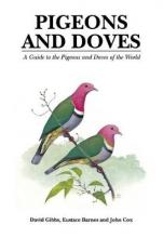Pigeons and Doves