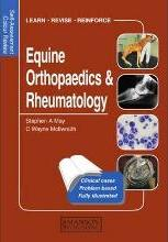 Equine Orthopaedics and Rheumatology