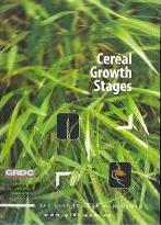 Cereal Growth Stages