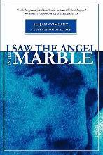 I Saw the Angel in the Marble