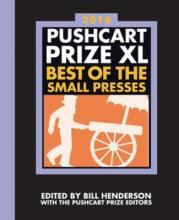 The Pushcart Prize Xl 2016