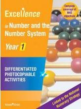 Excellence Number and the Number System: Year 1