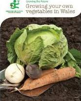 Growing Your Own Vegetables in Wales