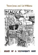Diary of a Witchcraft Shop