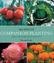 Secrets of Companion Planting