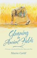 Gleaning in Ancient Fields
