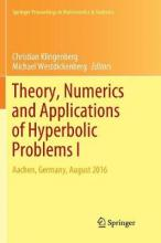 Theory, Numerics and Applications of Hyperbolic Problems I