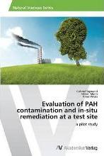 Evaluation of Pah Contamination and In-Situ Remediation at a Test Site