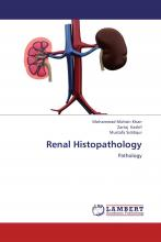Renal Histopathology