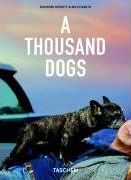 Tausend Hunde. 1000 Dogs. 1000 Chiens