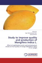 Study to Improve Quality and Production of Mangifera Indica L.